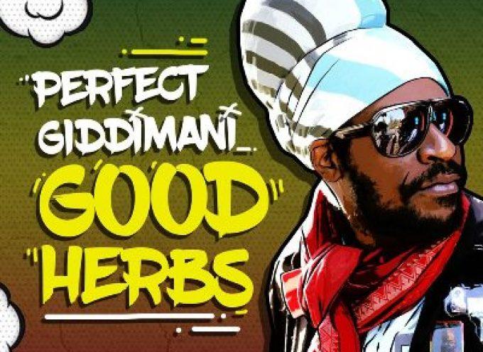 Perfect Giddimani – Good Herbs (prod by Jimmy Splif Sound)